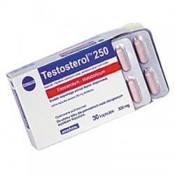 MEGABOL Testosterol 250 (30 kaps.)